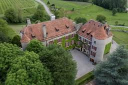 Un château médiéval sera vendu aux enchères