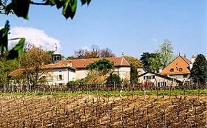 Une trentaine de nouveaux logements et des activités à l'entrée nord du village de Satigny